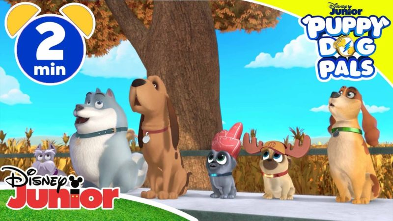 Amici di cuccioli | Tempo di baseball – Disney Junior Italia