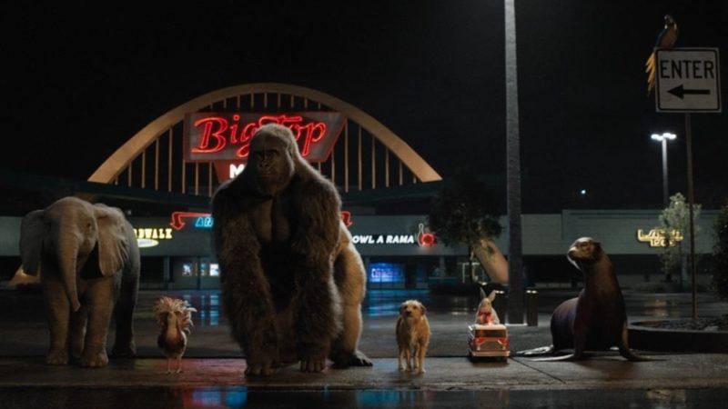 """Disney + il nuovo trailer, prossimo film  live-action / CG,  """"L'unico e insuperabile Ivan"""""""