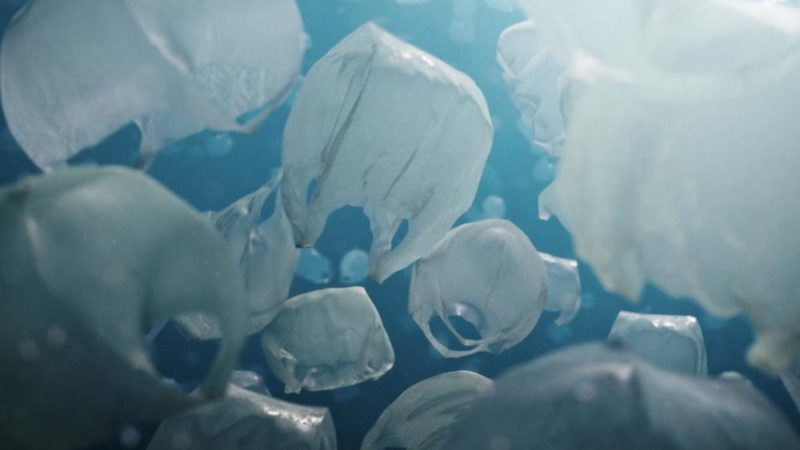 """Saastumisen kehitys: SIGGRAPH-voittaja Pascal Schelblin lyhytelokuva """"The Beauty"""""""