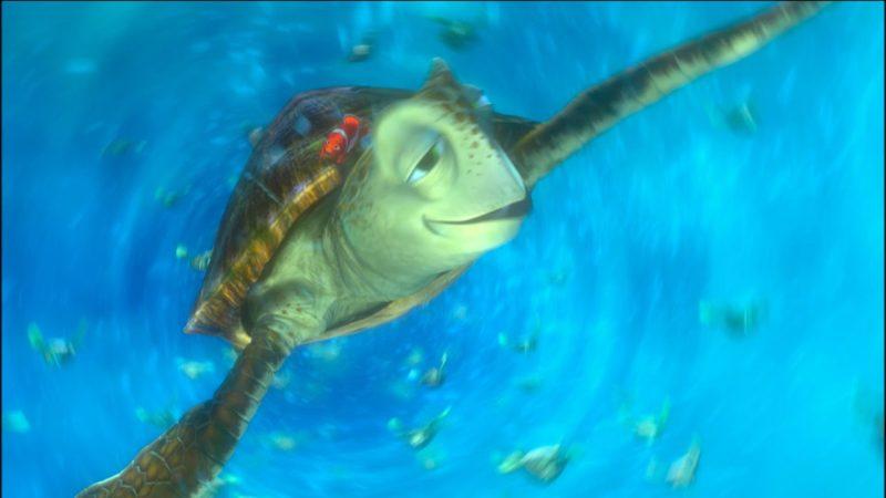 マーリンはカメと泳ぐ|写真カメと泳ぐ ファインディング・ニモ