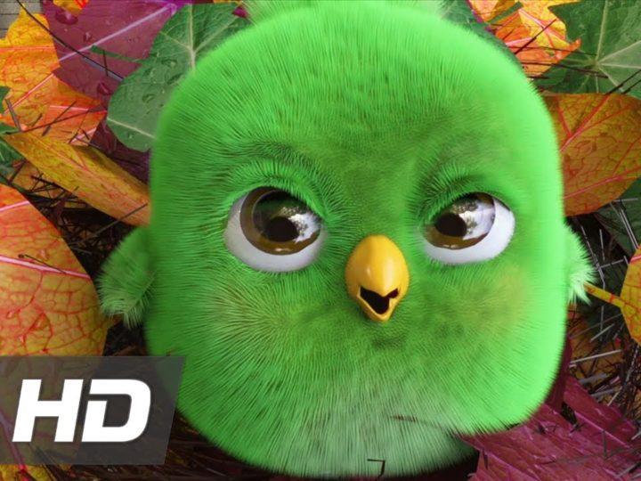 """Il cortometraggio animato in CGI """"Thatching Eggs"""" di Max Marlow"""