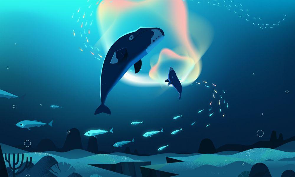 Less Noise, More Life (Meno rumore, più vita) il cartone animato sull'inquinamento acustico dei mari