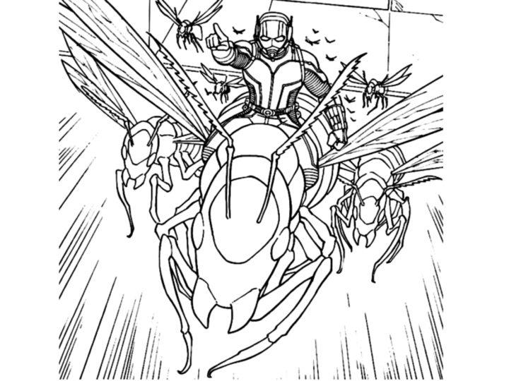 चींटी-आदमी रंग पेज