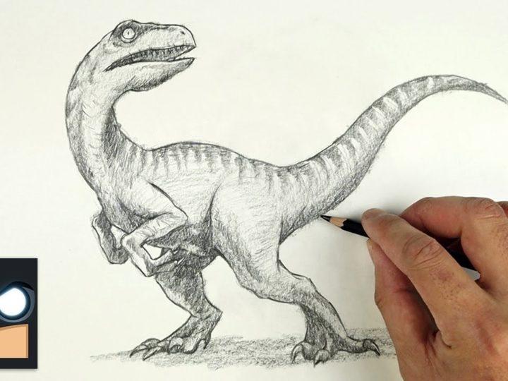 Come disegnare un Velociraptor con la matita