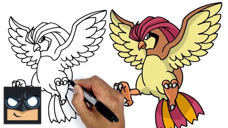 Come disegnare Pokemon | Pidgeotto
