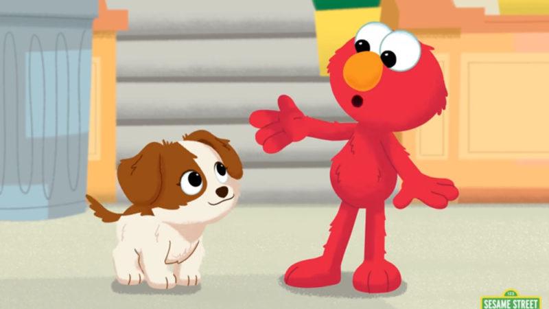 """Incontra il nuovo cucciolo di Elmo in Sesame Street, HBO Max Special """"Amici pelosi per sempre"""""""