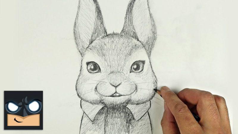 Come disegnare PETER CONIGLIO con la matita