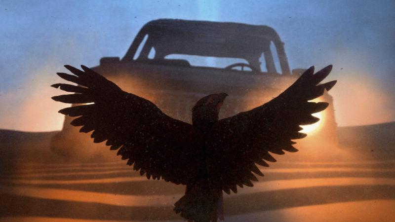 """L'amore per l'animazione artigianale di Sean Pecknold prende il volo in """"Featherweight"""" di Fleet Foxes"""