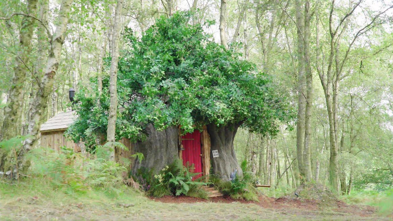 BearBnB | La vera casetta nel bosco ispirata a Winnie The Pooh