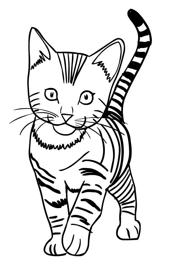 ausmalbilder katzen